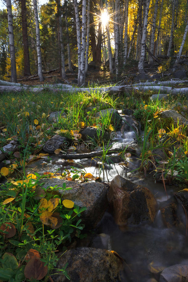 Hope Valley in Autumn. Hope Valley is accessible through Highway 89 in the Tahoe area in California stock photo
