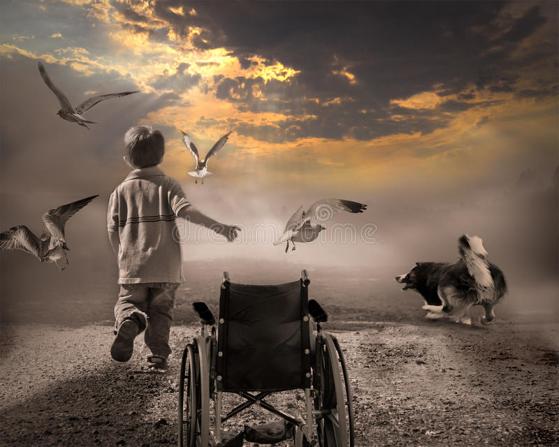 Hope,wish,dream, struggle, free!. A child and his dog happily chasing birds after being released from the of ill health and towards the sunlight of a new day royalty free stock photo