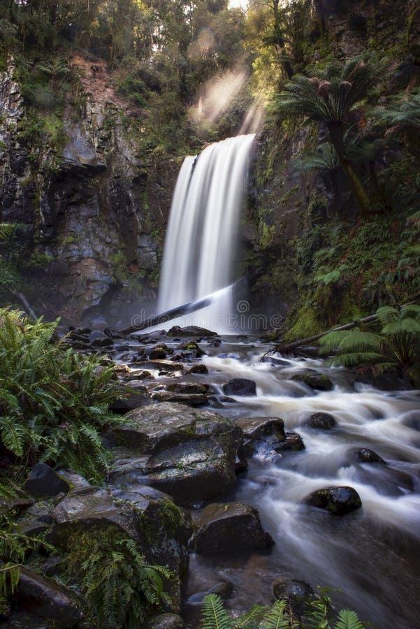 Hopetoun nedgångar i Grat Otway National parkerar arkivfoton