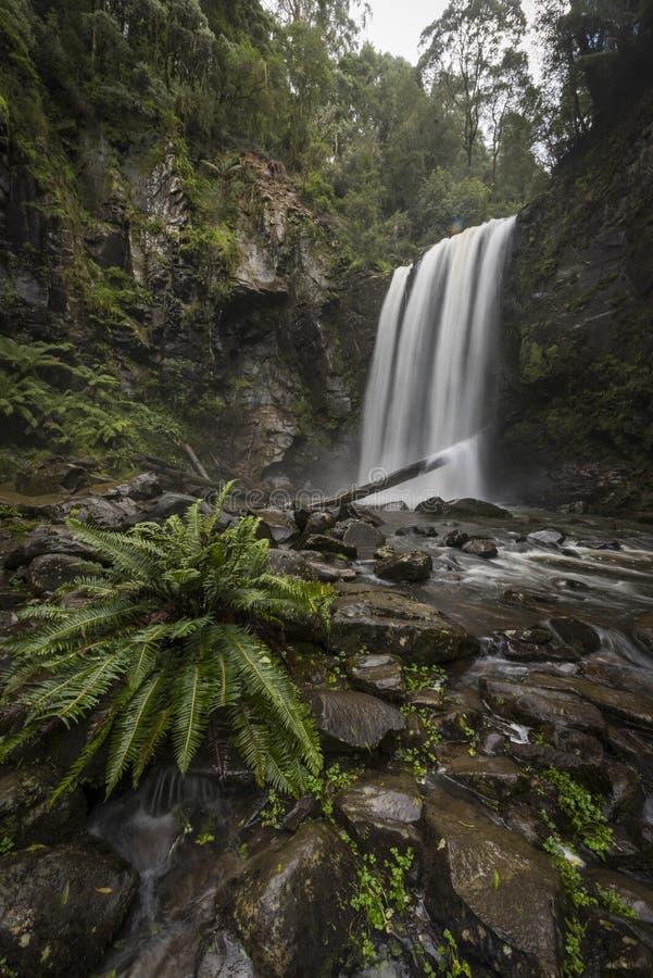 Hopetoun nedgångar i Grat Otway National parkerar royaltyfria bilder