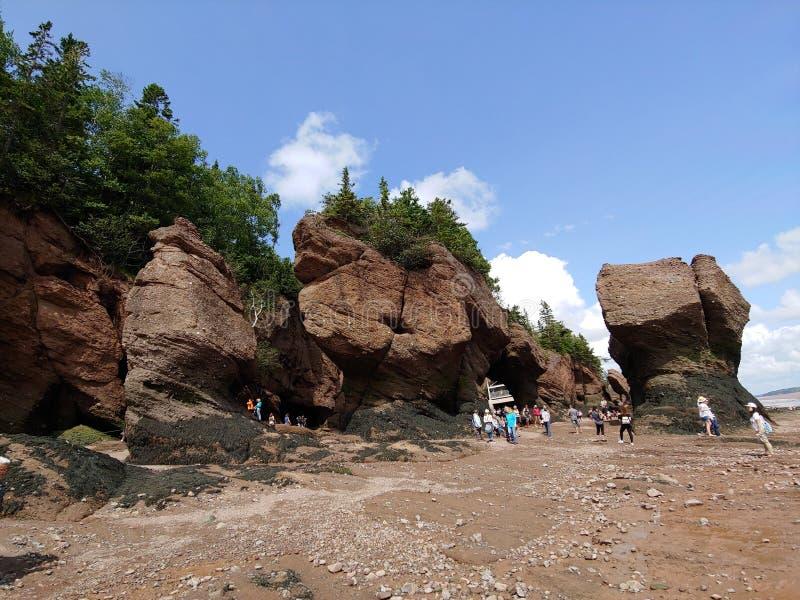Hopewell岩石-新不伦瑞克 免版税图库摄影