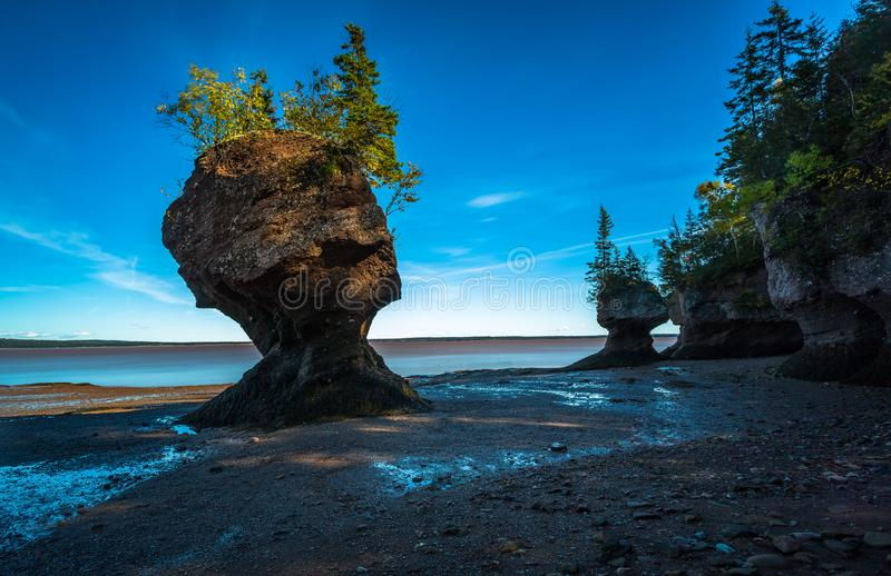 hopewell χαμηλή παλίρροια βράχων στοκ φωτογραφία με δικαίωμα ελεύθερης χρήσης