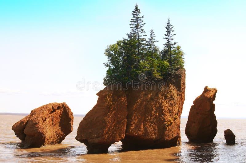 Hopewell Felsen, New-Brunswick, Kanada lizenzfreie stockbilder
