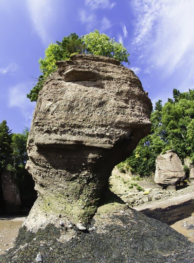 Free Hopewell Rocks Stock Photography - 21710282