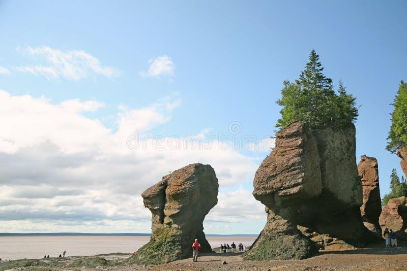 Download Hopewell Rocks, New Brunswick Stock Image - Image: 6147593