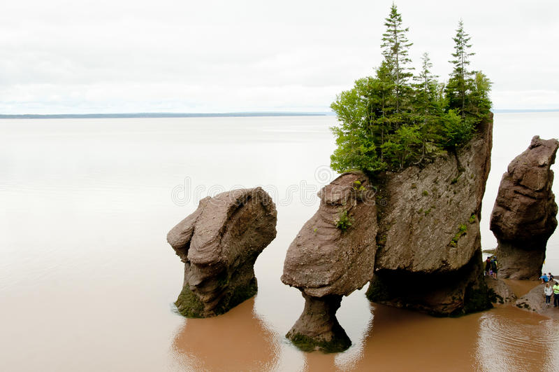 Hopewell schaukelt - New-Brunswick - Kanada stockbild