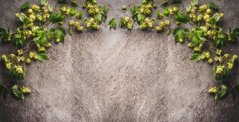 Hopgrens op donkere rustieke achtergrond stock foto's
