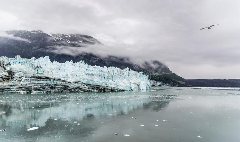 hopkins John de glacier Stationnement national de compartiment de glacier image stock