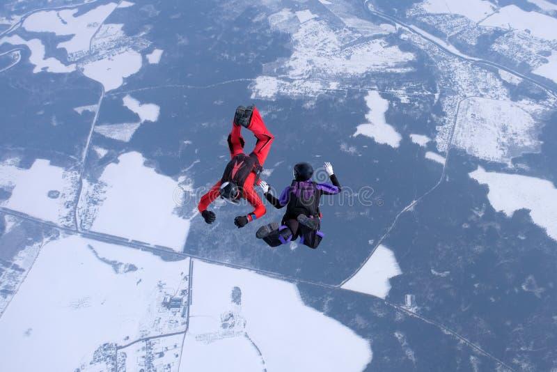 Hoppa med fritt fall för vinter Två skydivers utbildar i himlen arkivfoto