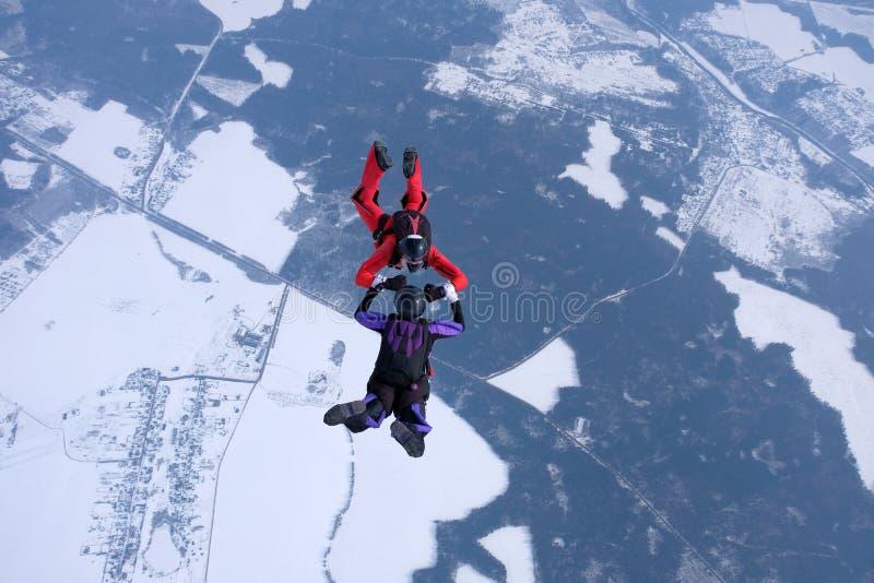 Hoppa med fritt fall för vinter Två skydivers utbildar i himlen arkivbild