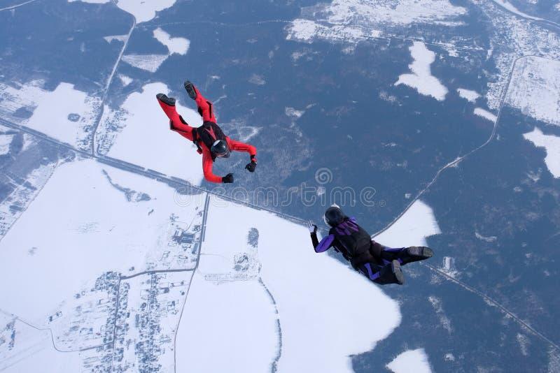 Hoppa med fritt fall för vinter Två skydivers utbildar i himlen arkivfoton