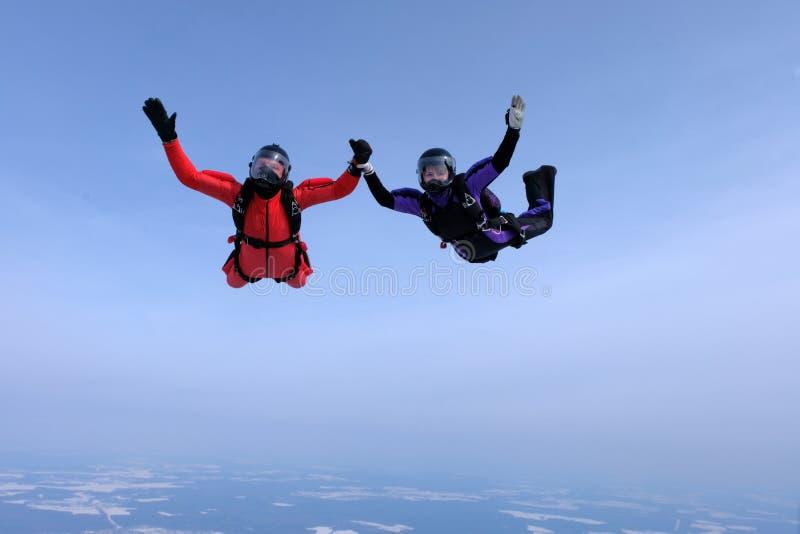 Hoppa med fritt fall i den blåa himlen Två skydivers rymmer händer royaltyfri foto