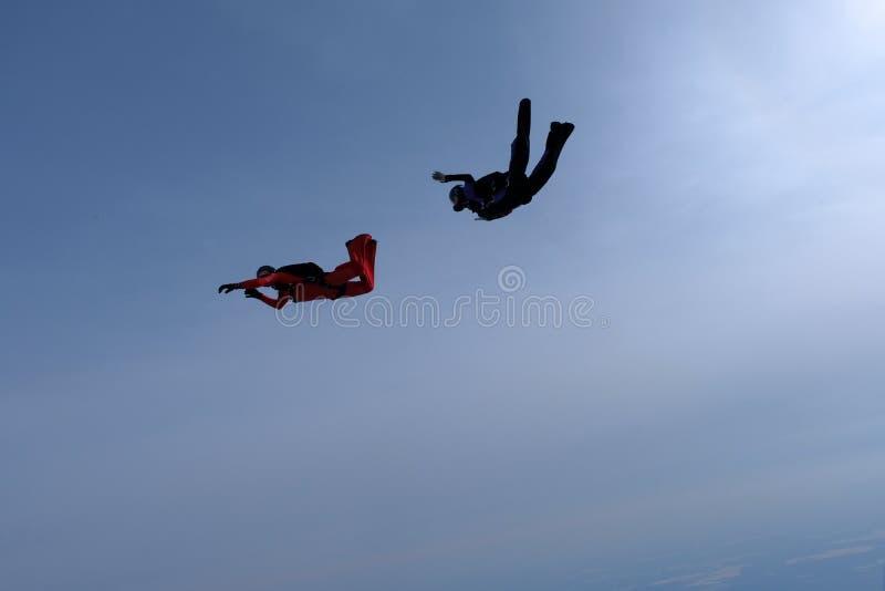 Hoppa med fritt fall i den blåa himlen Två skydivers utbildar arkivfoton