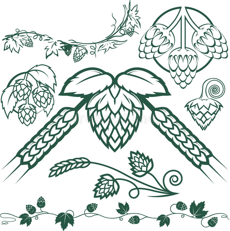 Hops Collection. Clip art collection of hops symbols and icons royalty free illustration