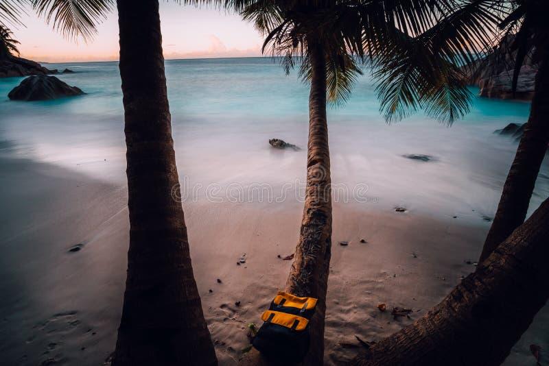 Hora azul pitoresca na praia ideal no anse Patates no La Digue Seychelles Atmosfera quietamente romântica, palma bonita imagem de stock