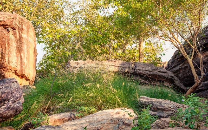 Hora de oro en el parque nacional de Kakadu, Territorio del Norte, Australia fotos de archivo