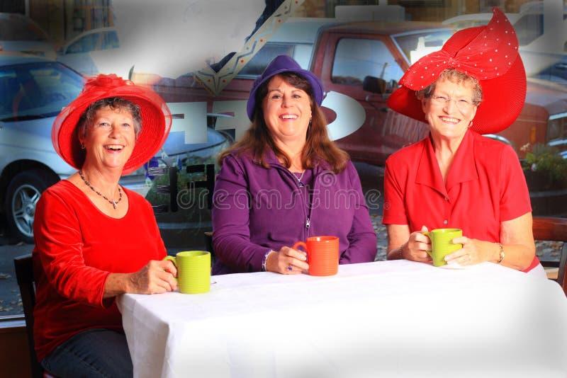 Hora do café das senhoras de Red Hat fotografia de stock
