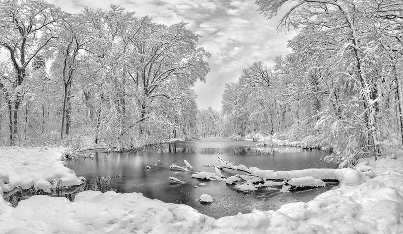Horaire d'hiver dans la forêt avec le lac congelé en Roumanie, parc de Stirbei photos libres de droits
