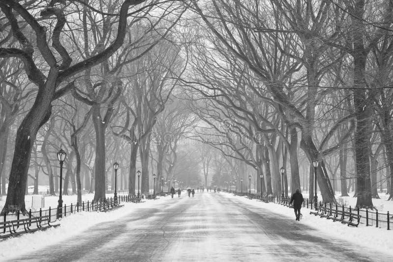 Horaire d'hiver dans le Central Park photographie stock libre de droits