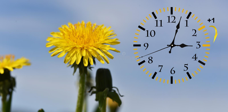 Horario de verano DST Reloj de pared que va invierno fotos de archivo