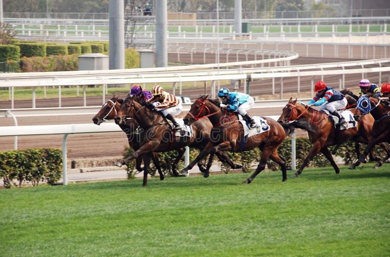 Horce Racing In Hong Kong Editorial Image