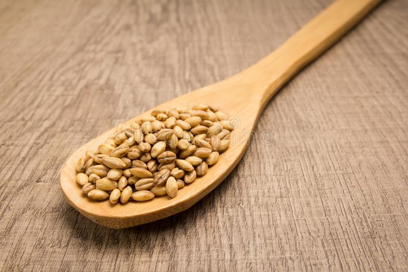 Barley cereal grain. Spoon and grains over wooden table. stock images