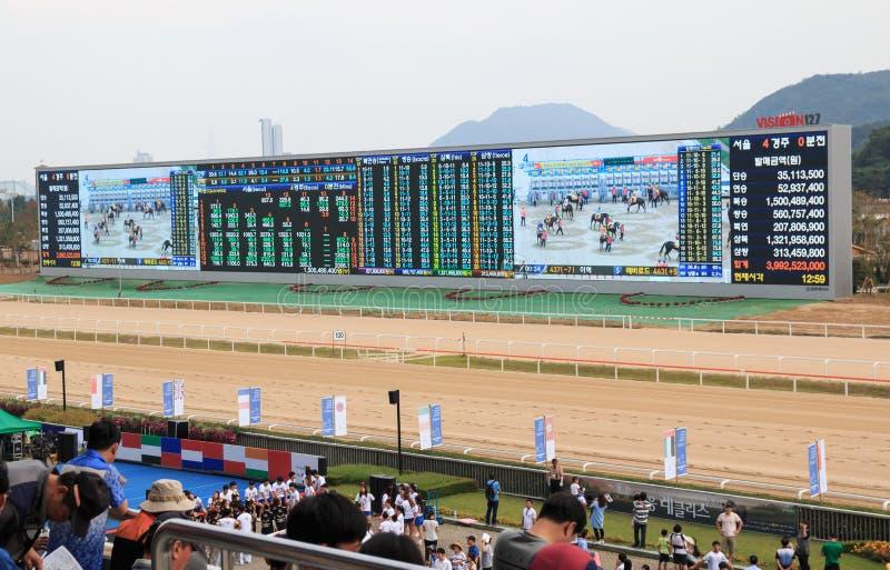 Hores bieżny stadium wymieniający Pozwalał my biegać parka w Seul, Korea zdjęcie royalty free
