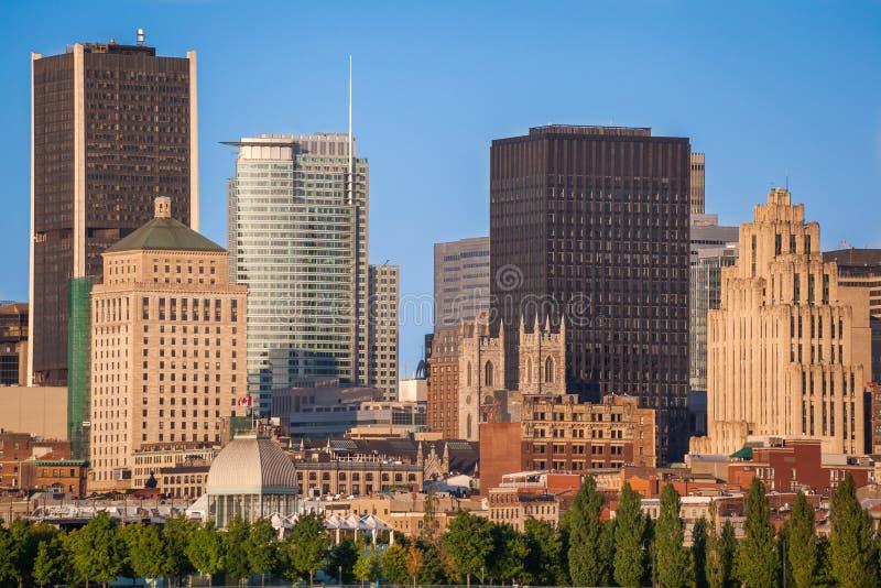 Horisont av gamla Montreal royaltyfri bild