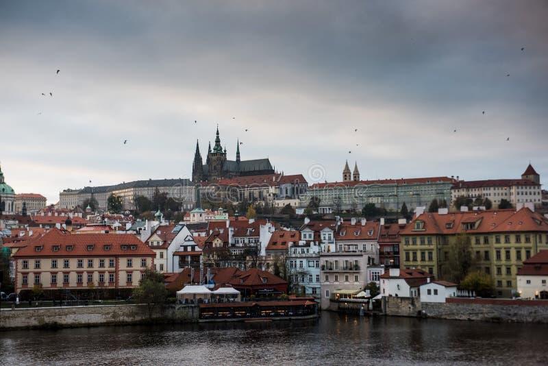 Horisont i Prague vid natt royaltyfri fotografi