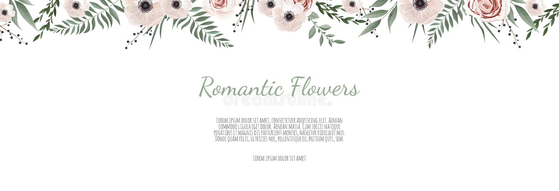 Horisontal植物的传染媒介设计横幅 桃红色玫瑰,玉树,多汁植物,花,绿叶 天然泉卡片或 皇族释放例证