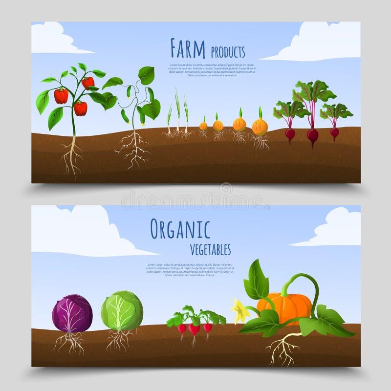 Horisontalbaner för sund mat royaltyfri illustrationer