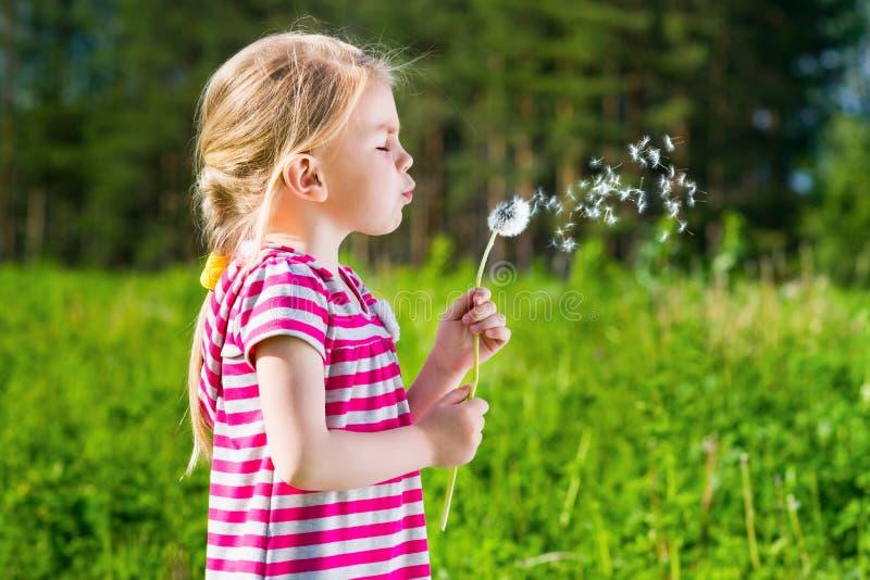 Blond liten flicka som blåser en maskros fotografering för bildbyråer