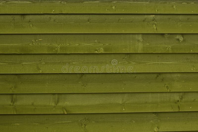 Horisontalträplankor för härlig grön träbakgrundsmodell royaltyfri foto
