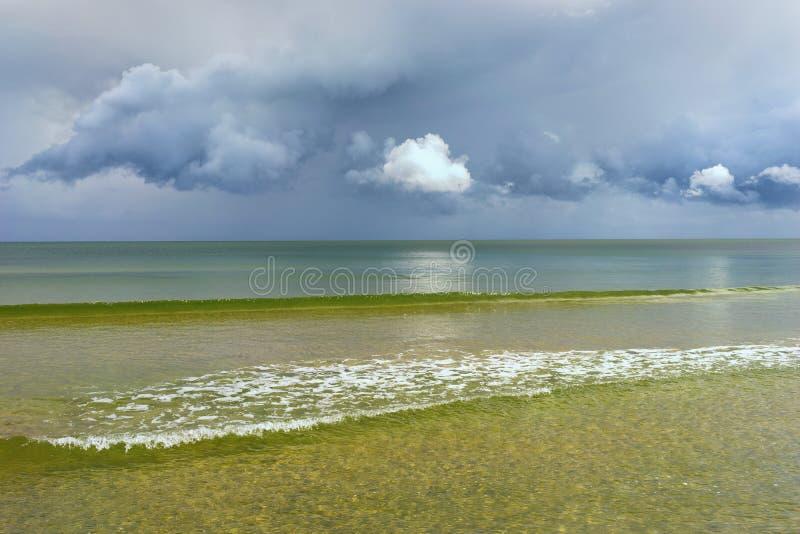 Horisonten av det baltiskt med moln royaltyfri bild