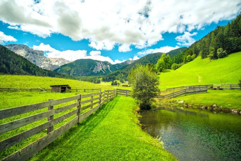 Horizon éloigné grand-angulaire en bois d'herbe verte de barrière de lac d'étang de paysage de montagne image stock