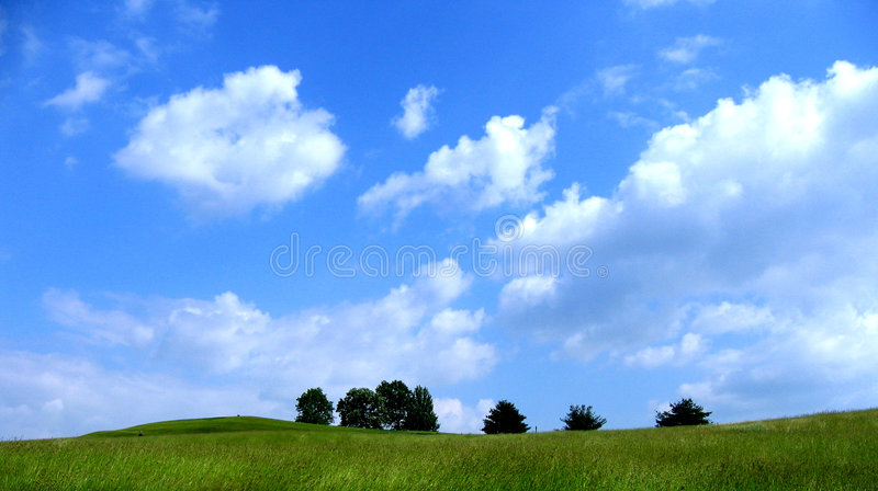 Download Horizon stock photo. Image of relax, upstate, meadow, environment - 3252274