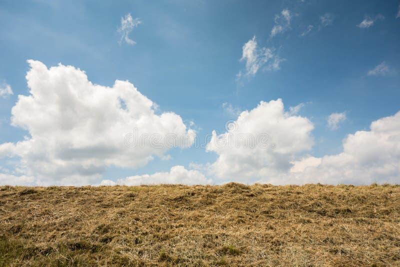 Horizon de hemel stock fotografie