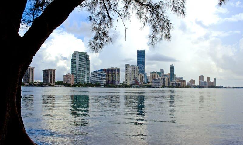 Horizon de Miami images libres de droits