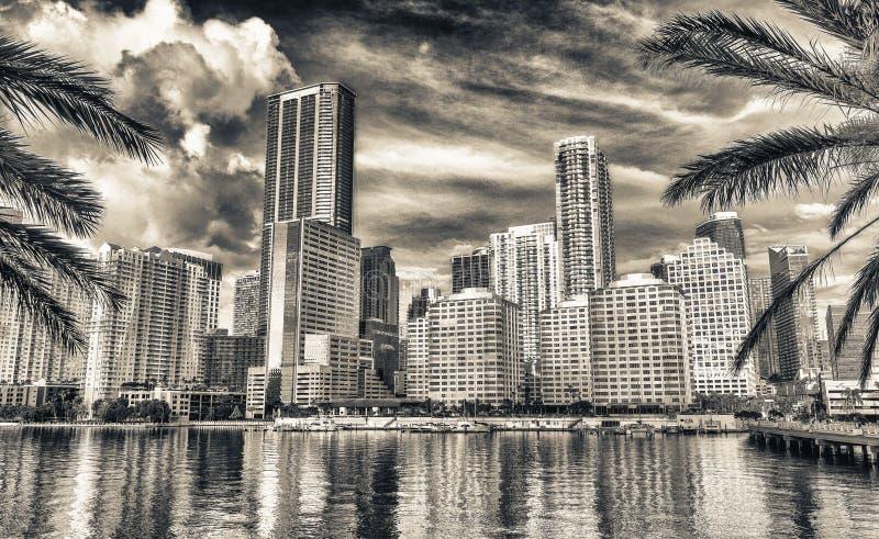 Horizon de Miami et réflexions du centre de bâtiments de Brickell K photographie stock libre de droits