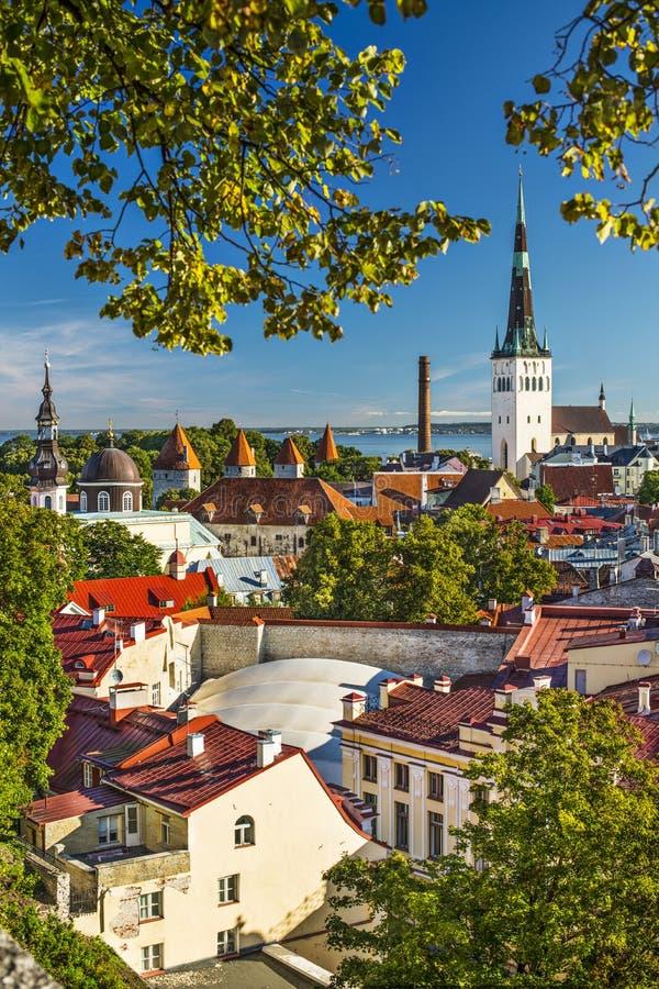 Horizon De Tallinn Estonie Photo libre de droits