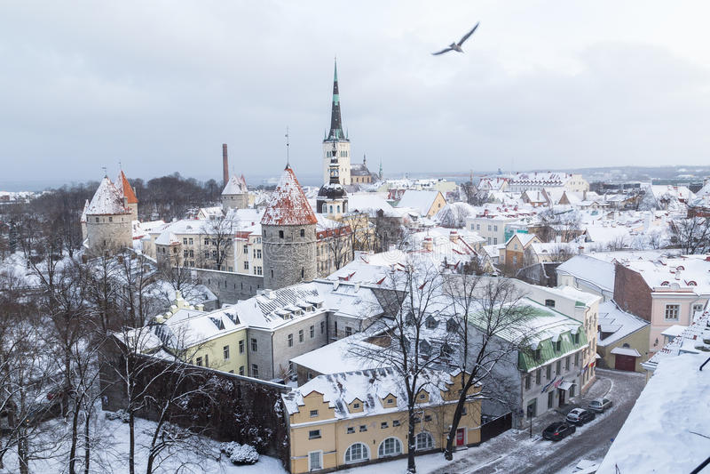 Horizon de Tallinn pendant l'hiver photos stock
