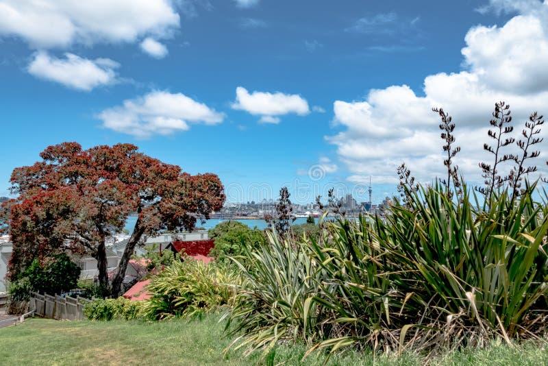 Horizon de ville un jour d'été, Auckland, Nouvelle-Zélande photo stock