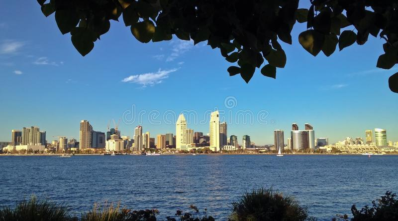 Horizon du centre de ville encadré par des arbres images libres de droits