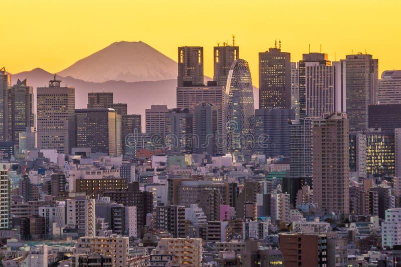Horizon et montagne Fuji de Tokyo photo libre de droits