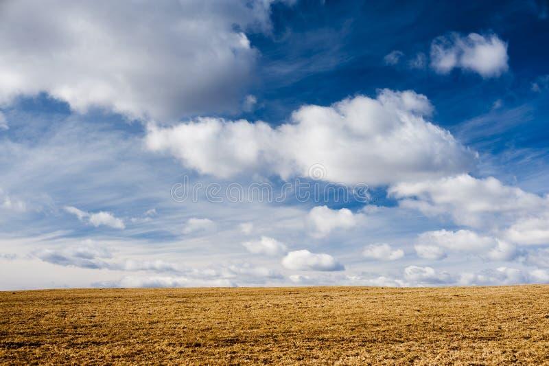 Horizon met schitterende hemel stock fotografie