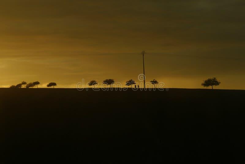 Download Horizon at sunset stock image. Image of nightfall, evening - 11166263