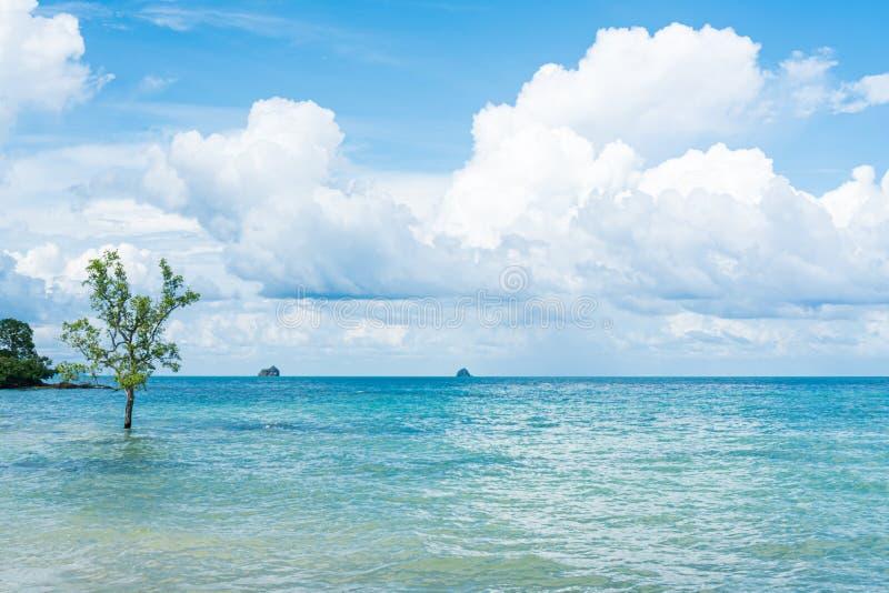 Horizon van het overzees en de hemel stock fotografie