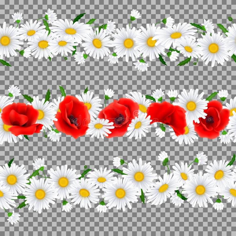 Horizontaal Naadloos patroon met Papavers en Kamille royalty-vrije illustratie
