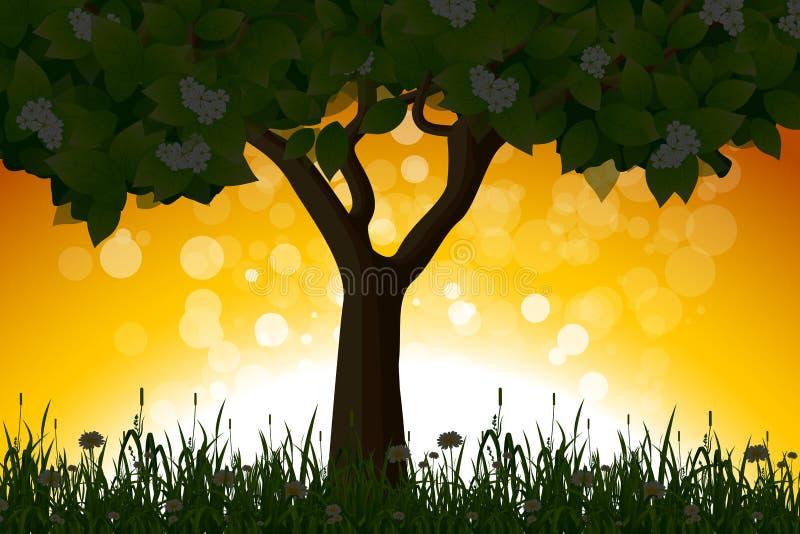 Horizontal étonnant de lever de soleil avec l'arbre illustration de vecteur