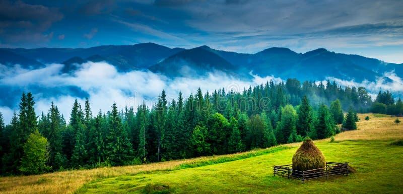 Horizontal étonnant de montagne images libres de droits